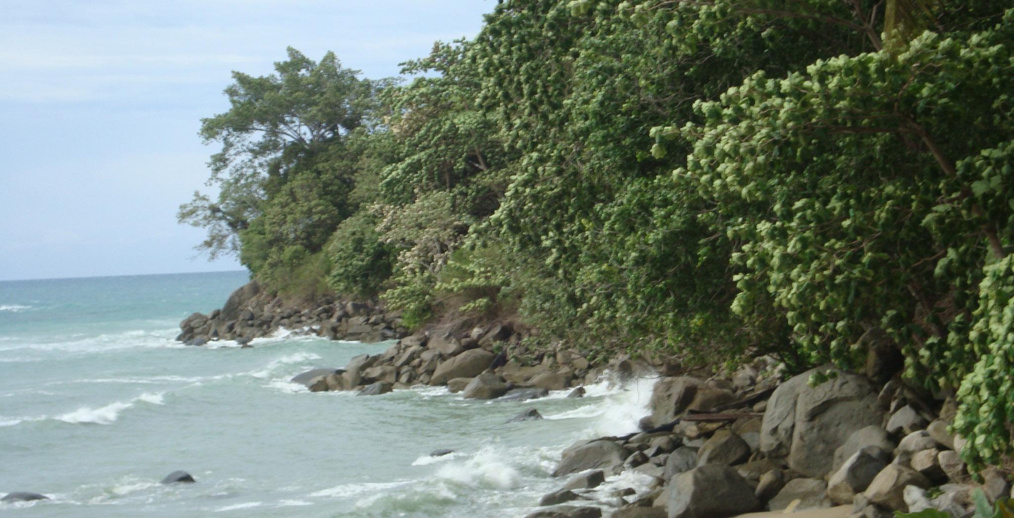 Kenyataan Kawasan Konservasi dan Hutan  Lindung NoerDblog