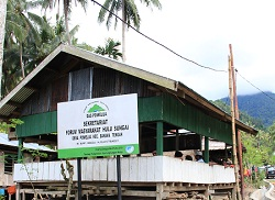 Durian Bali